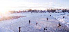 cottage-rink