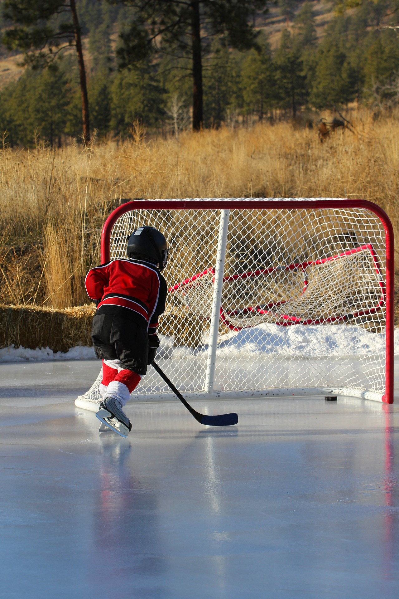 hockey-1202478_1920